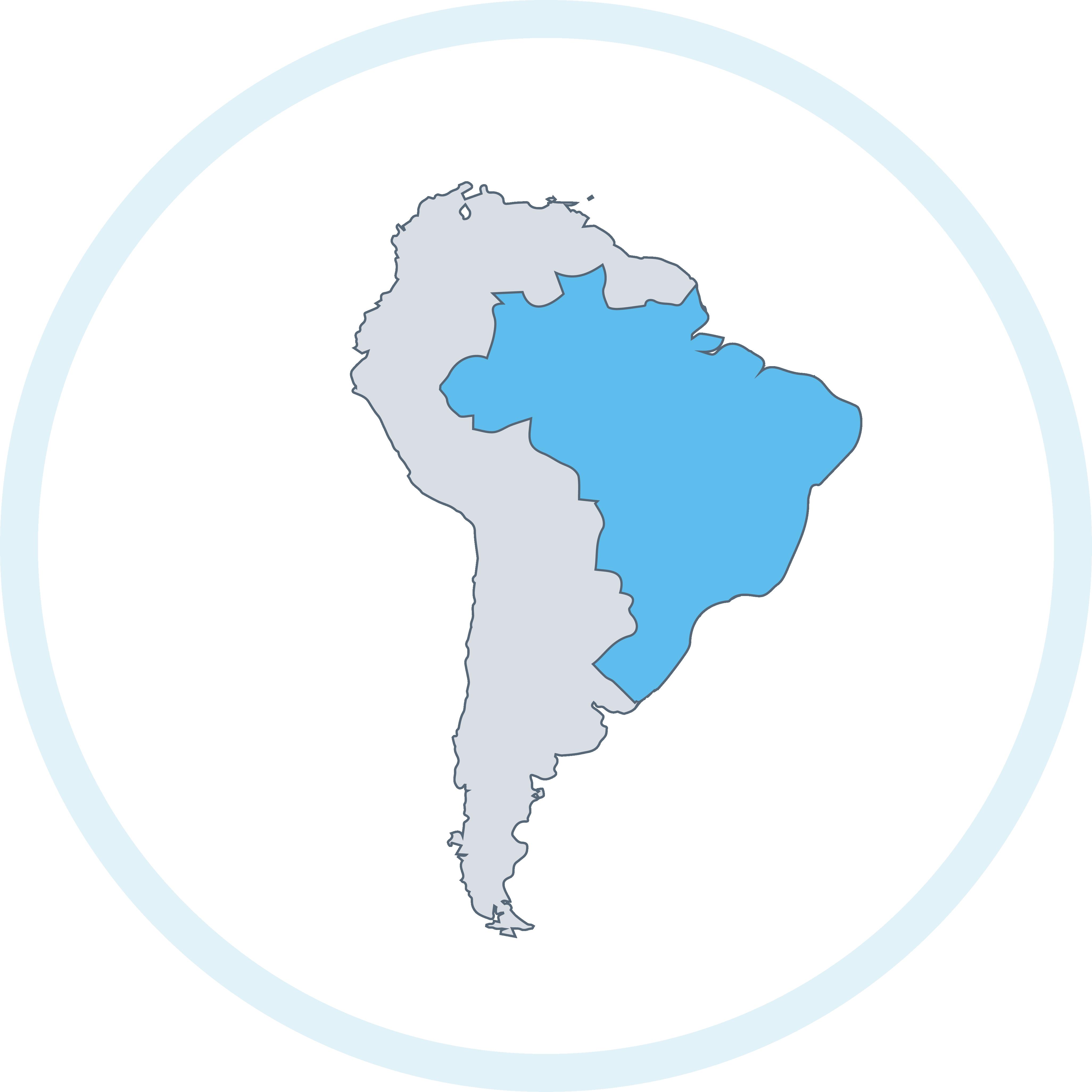 brasile silhouette